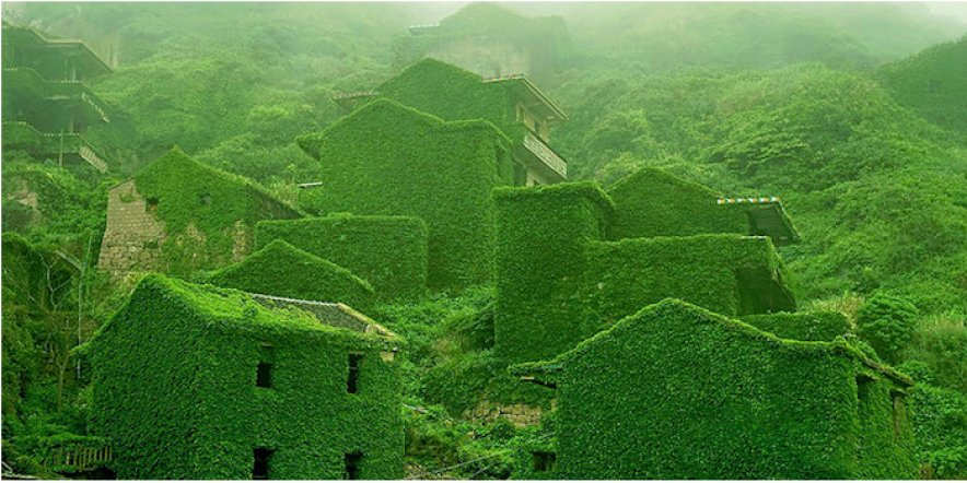 A village reclaimed by nature