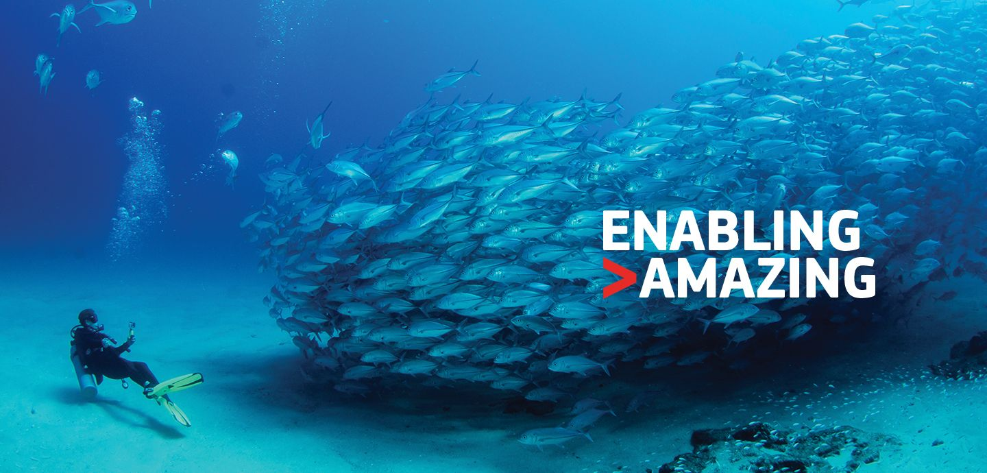 Amadeus Internal Communications Campaign
