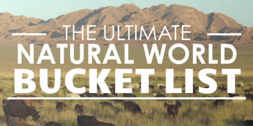 The Ultimate Natural World Bucket List